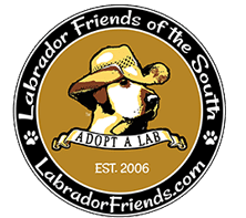 Labrador Friends Of The South
